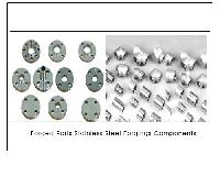 Forged Parts Stainless Steel Forgings Components